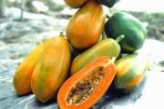 Đu đủ có chứa nhiều chất dinh dưỡng tốt cho sức khỏe