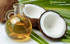 2 cách làm dầu dừa nguyên chất tại nhà đơn giản nhất