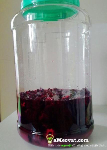 Cách ngâm hoa atiso với đường - Nước uống hoa atiso đỏ