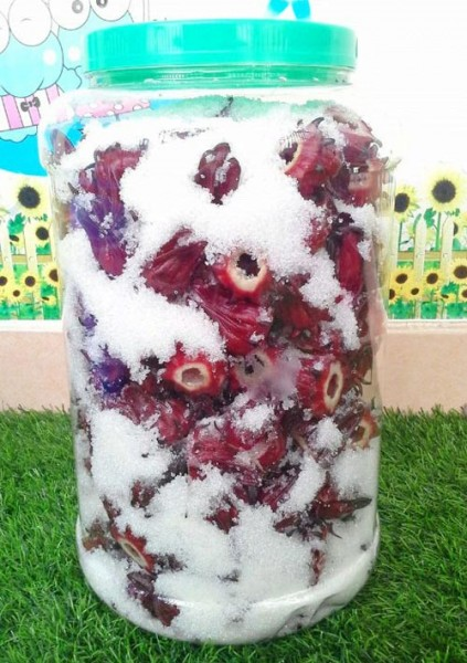 Cách ngâm hoa atiso với đường - Ngâm hoa atiso đỏ với đường