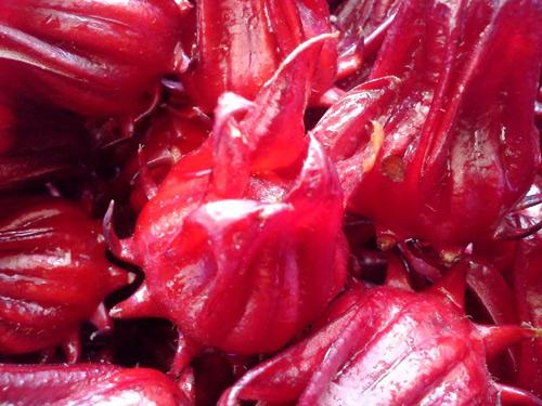 Cách ngâm hoa atiso - Rửa Sạch hoa atiso đỏ