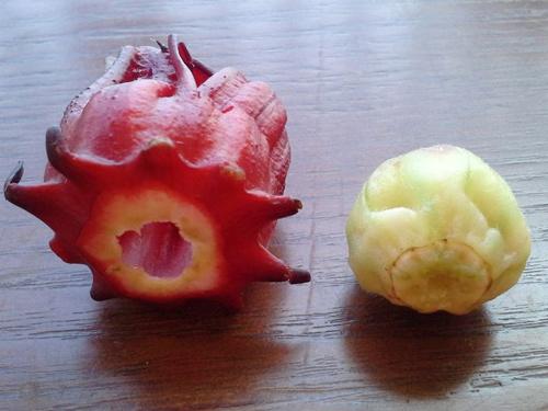Cách ngâm hoa atiso đỏ - Tách nhụy và cánh hoa atiso ra