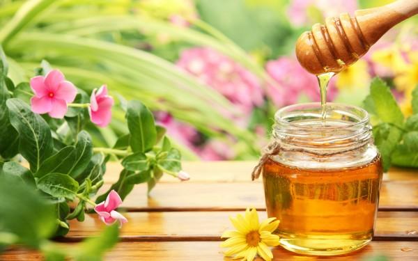 tac dung cua mat ong - Mật ong là chất kháng sinh tuyệt vời nhất cho cơ thể