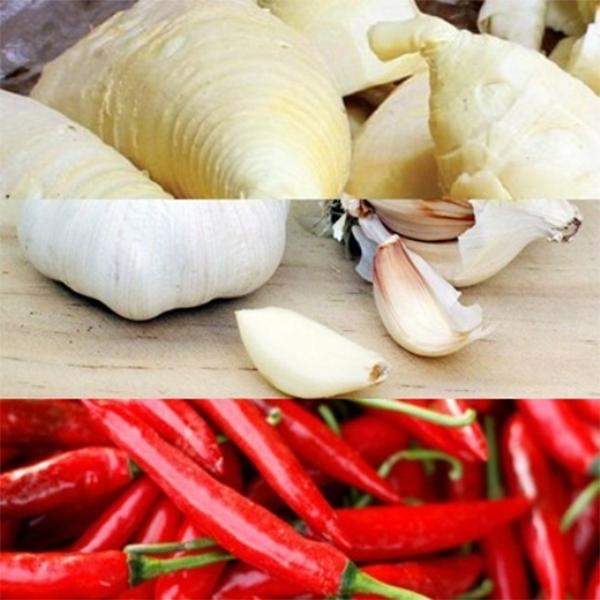 Tỏi ớt dùng để làm măng ớt - cách muối măng ớt