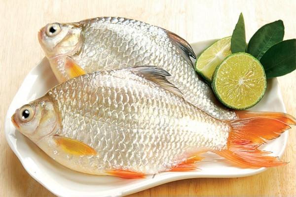 Bạn có thể chọn bất cứ loại cá nào để làm món cá sốt - cách làm cá sốt cà chua