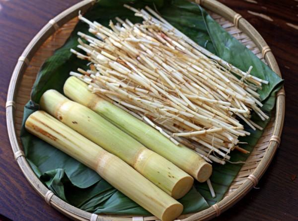 Mía lau và rễ tranh - cách nấu nước sâm ngon