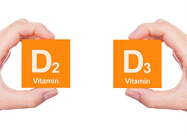 D2 và D3 là hai dạng vitamin nhóm D chính - công dụng của vitamin d