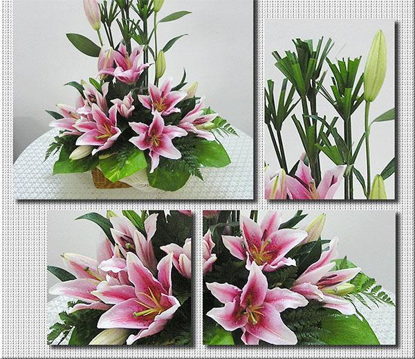 Cách cắm hoa ly để bàn ngày tết đẹp mà tươi lâu - cách cắm hoa ly đẹp - cach cam hoa ly