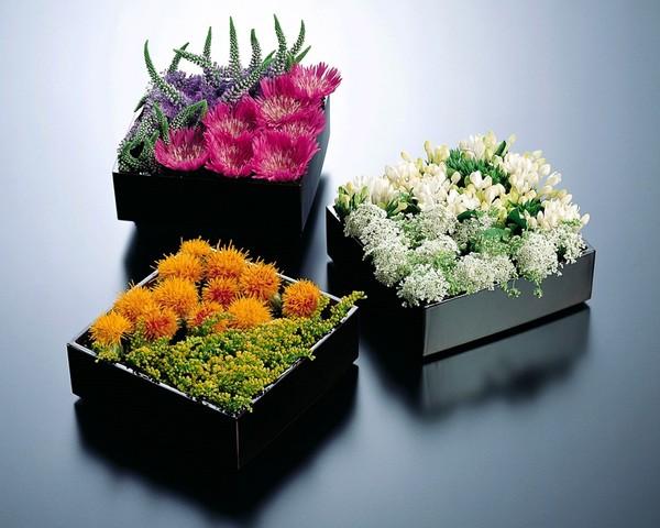 Vườn hoa trên cát - cách cắm hoa ngày tết đơn giản - cách cắm hoa đẹp