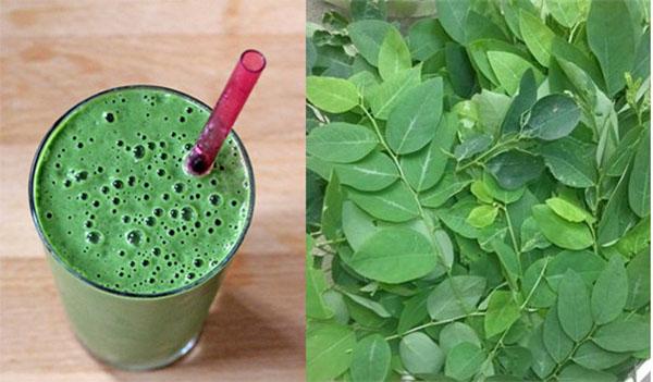 Nước ép lá rau ngót - cách trị nhiệt miệng nhanh nhất