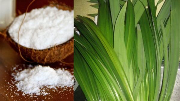 Lá dứa và nước cốt dừa - cach nau che hoa cau