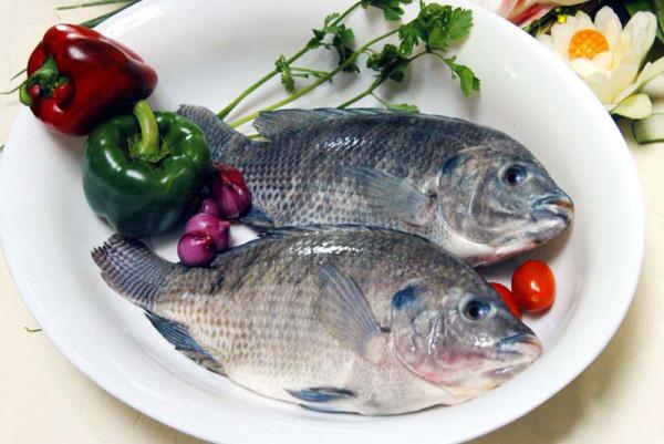 Cá tươi - cách nấu bún cá ngon