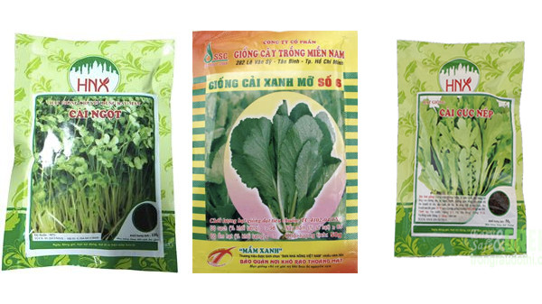 Chuẩn bị trồng rau cải - cach trong rau cai