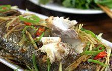 Hướng dẫn cách nấu cá chép hấp xì dầu ngon như nhà hàng